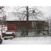 Дом жилой. Жабинковский р-н. Брус / шифер. 53.9 / 32.8 м.кв. 2 комнаты. 120128 фото