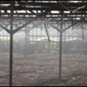 Туманообразующие системы и системы дождевания фото