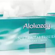Салфетки бумажные Alokozay фото