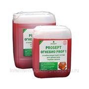 PROSEPT ОГНЕБИО PROF 1 - огнебиозащитный состав 1-ая группа фото