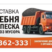 Заказать вывоз мусора фото