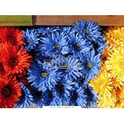 Цветы искусственные пластмассовые фото