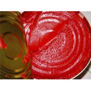 Паста томатная 30% фото