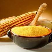 Мука кукурузная фото