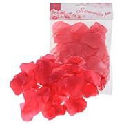 Лепестки роз, цвета фуксии, с запахом фото