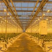 Проектирование систем электроосвещения и освещения фото