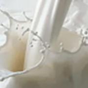 Молоко пастеризованное 3,4% наливное фото