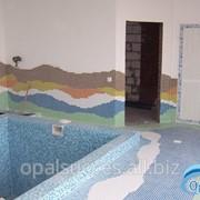 Скиммерный бассейн фото