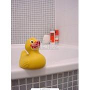 Ванна чугунная бытовая фото
