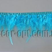 Перо-юбка морской волны 8-13см/48-50см 570433 фото