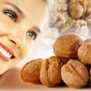 Грецкие орехи опт и розница фото