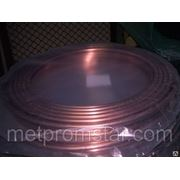Труба М3Р ф16х2,0х3,1м(6,21м) мяг фото