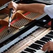 Настройка рояля фото