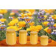 Мёд цветочный фото