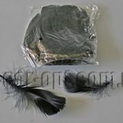Перья черные 5-13 см 100 шт 3661 фото