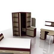 Мебельный гарнитур фото