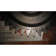 Шестерня компрессора ISBE-ISDE (3971520) фото