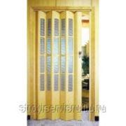Дверь Гармошка остекленная фото