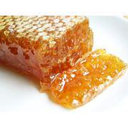 Сотовый мёд фото