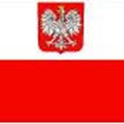 Помощь в поиске зарубежных партнеров в Польше фото