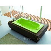 Ванна Е1 фото