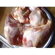 Мясо индейки фото