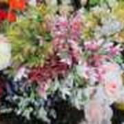 Искусственные цветы, высокого качества. фото