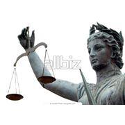 Семейные судебные тяжбы фотография