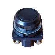 Кнопка КЕ-021 гриб фото