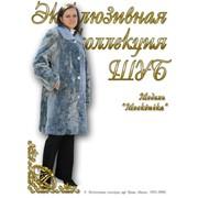 "Модель ""Москвичка"" фото"