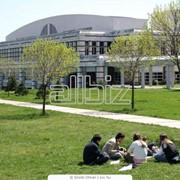 Государственные университеты фото