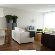 Мебель для гостиных комнат фото