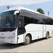 Автобус заказ хайгер, 35 мест фото