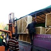 Строительство каркасных домов из соломенных панелей фото