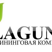 Клининговая компания Лагуна фото