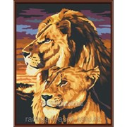 Картина по номерам Лев и львица фото
