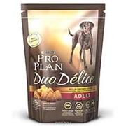 Pro Plan 700г Duo Delice Сухой корм для взрослых собак средних и крупных пород Курица фото