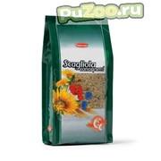 Padovan scagliola - канареечное семя для птиц фото