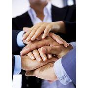 Консультации по развитию бизнеса фото