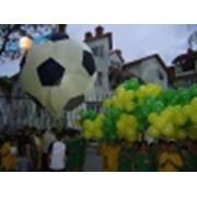 Организация спортивных праздников фото