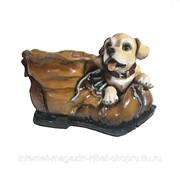 Кашпо декоративное Ботинок с собачкой, 26*18*18 см фото