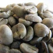 Кофе зелёный (сырой) фото