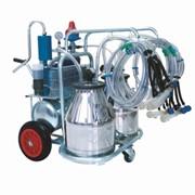 Оборудование для доения для коз и овец AG-4K фото