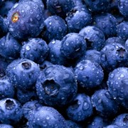 BLUEBERRIES IN UKRAINE - GOOD BUSINESS фото