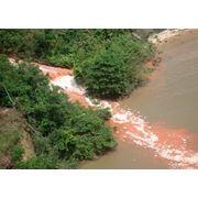 Информационные услуги по проблемам охраны окружающей среды и экологии фото