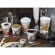 одноразовые стаканы суповые контейнеры ланч бокс вилки ложки и т.д. фото