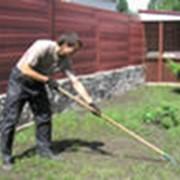 Услуги садовника фото