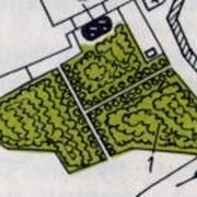 Проектирование плодоовощных садов, консалтинговые услуги фото
