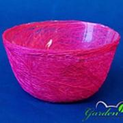Plastiflora Корзина Диффенбахия родамин из сизаля 8*17 фото