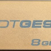 8Gb DataTraveler GE9 Kingston USB-флеш накопитель, USB 2.0, DTGE9/8GB, Золотистый фото